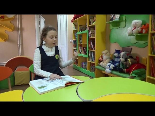 Изображение предпросмотра прочтения – СофьяКоколевская читает произведение «Деревья» А.Н.Плещеева