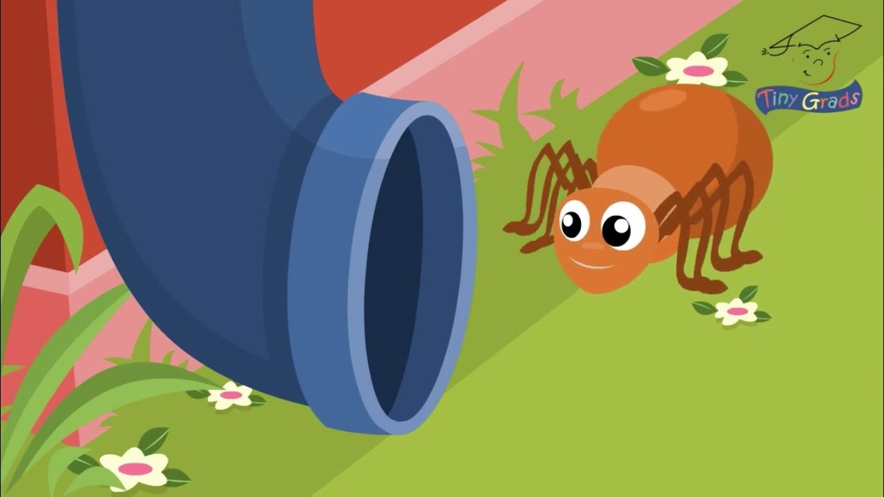 The Itsy Bitsy Spider. TinyGrads. Homeschool families ...