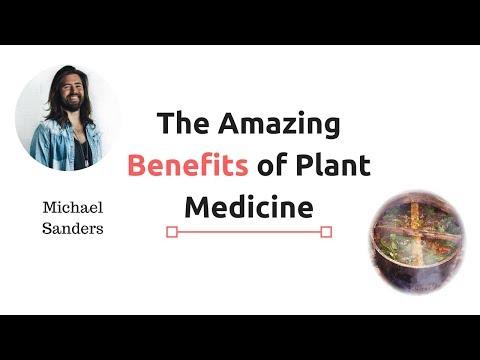The Amazing Benefits of Plant Medicine