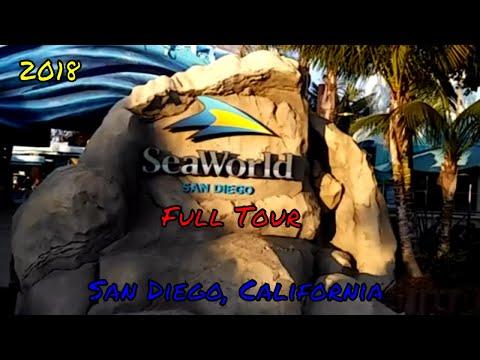 SeaWorld San Diego Full Tour