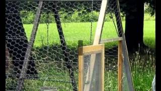 Cheap Movable Chicken Coops For Sale | Ideas & Designs & Plans For Easy Movable Chicken Coops