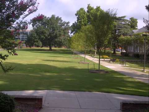 Green Space Transformation