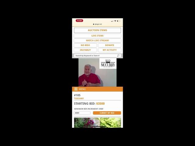 Virtual Auction Demo