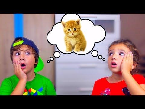 Камиль и Аминка НАШЛИ КОТЯТ! Почему ПАПА НЕ НЕХОЧЕТ их ОСТАВЛЯТЬ! Видео для Детей