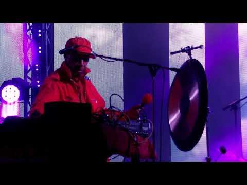 Laraaji на фестивале Fields в Парке Горького - магия звука