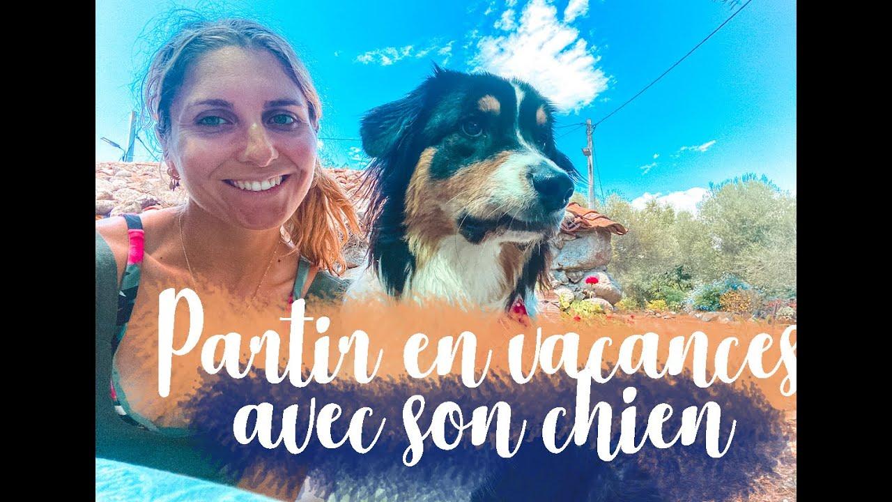 Conseils : Partir en vacances avec son chien (Transports, Hébergements, Activités...)