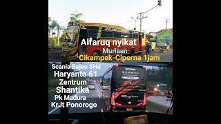 Mr Gaplex Setia Negara Alfarruq Bus Cirebonan, Jurusan Kalideres - ...