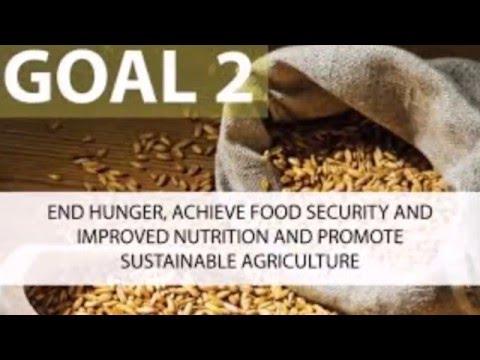 UN SDG Video: Zero Hunger