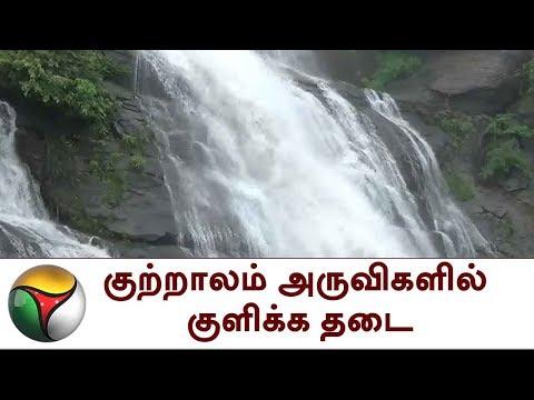 குற்றாலம் அருவிகளில் குளிக்க தடை | Water level increased in Courtallam