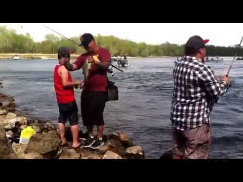 White bass fishing at red wing dam 2015