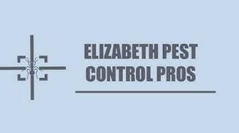Elizabeth Pest Control Pros- Bee, wasp, Hornet Control Service in Elizabeth NJ
