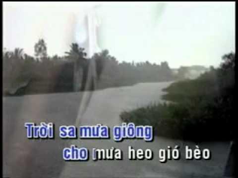 Sa mua giong   Hoai Nam