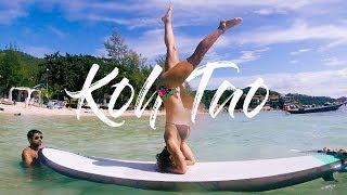 Koh Tao | Thailand Travel Vlog