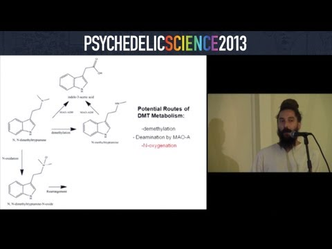 Ayahuasca Characterization, Metabolism in Humans, and Relevance to Endogenous DMT - Ethan McIlhenny