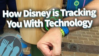 How Disney is Tracking You With Technology! thumbnail