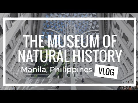 VISITING THE NATIONAL MUSEUM OF NATURAL HISTORY MANILA PHILIPPINES (FREE ADMISSION)