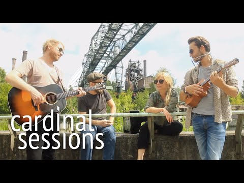 Young Chinese Dogs - Sweet Little Lies - CARDINAL SESSIONS (Traumzeit Festival Special)