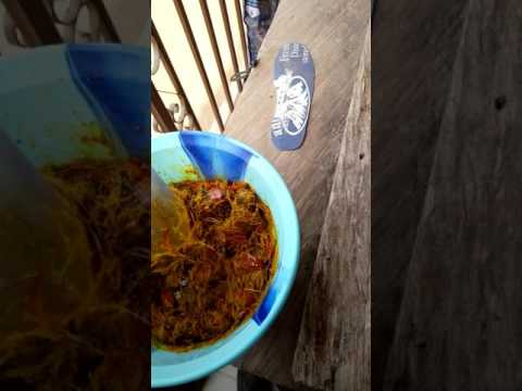 How to extract palm fruit juice for Banga Soup (Owhoedi)
