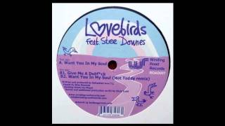 Lovebirds feat. Stee Downes - Want You In My Soul (Original Mix)