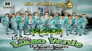 Banda Llano Verde de Zirahuen 2017 - Álbum *El Caballito* Completo