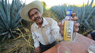 видео Из чего делается текила: как и с чем ее пить