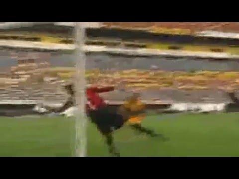 Mejores Goles de Javier 'Chicharito' Hernndez