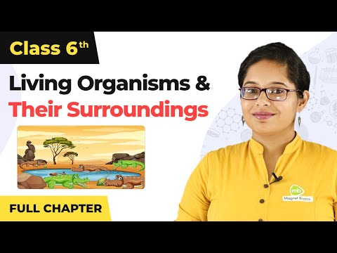 The Living Organisms and their Surroundings Full Chapter Class 6 Science | NCERT Class 6 Chapter 9