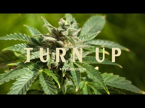 """Turn Up"" 