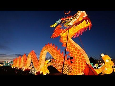 Dragon Lights at the Utah State Fair Park
