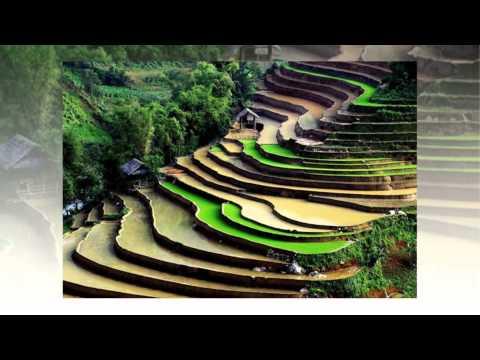 [VietSub] Theo Cha Lên Núi Theo Mẹ Xuống Biển - TT. Thích Chân Quang
