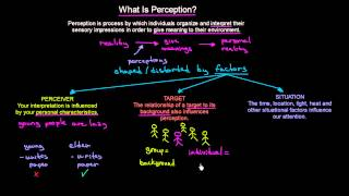 What is Perception | Organisational Behavior | MeanThat