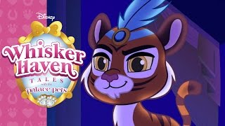 the night knight guard   whisker haven tales with the palace pets   disney junior