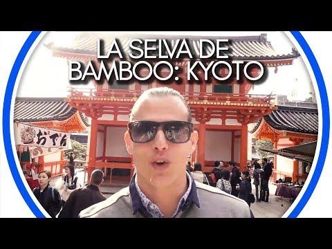 La Selva de Bamboo: Kyoto