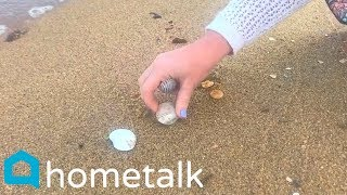 6 Stunning Ways To Decorate With Seashells You Pick Up On The Beach This Summer! | Hometalk