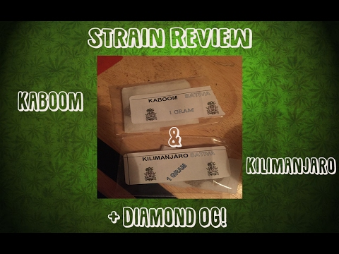 Smoking 3 Different Strains!!