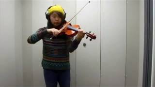 One Republic in  Secrets (Violin Cover)