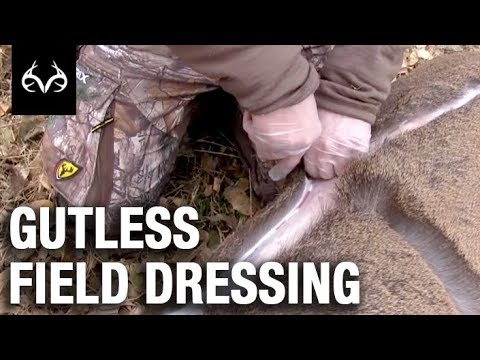 Game Processing: The Gutless Field Dressing Method