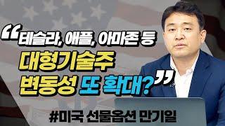 테슬라, 애플, 아마존 등 대형기술주 변동성 또 확대?…
