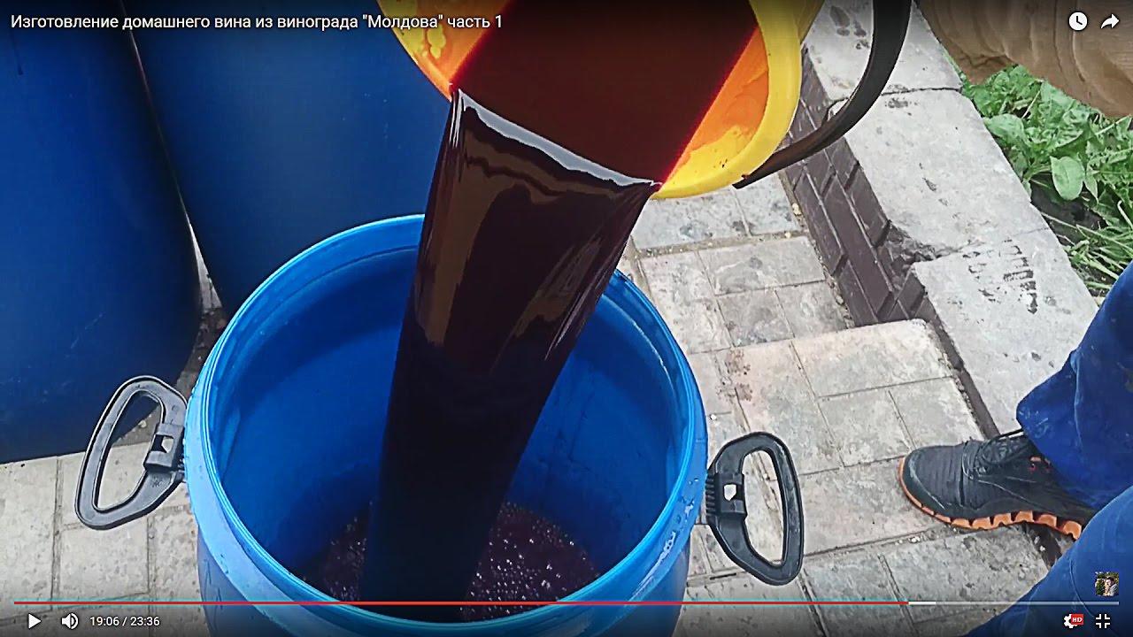 Изготовление домашнего вина из винограда
