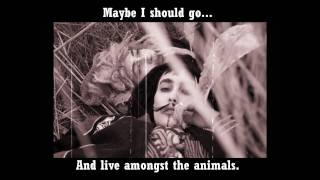 CocoRosie - Animals (With Lyrics)