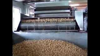 Continuous flow fryer