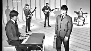 The Animals - House of the Rising Sun (clip, 1964) ♥♫ 55 YEARS & counting