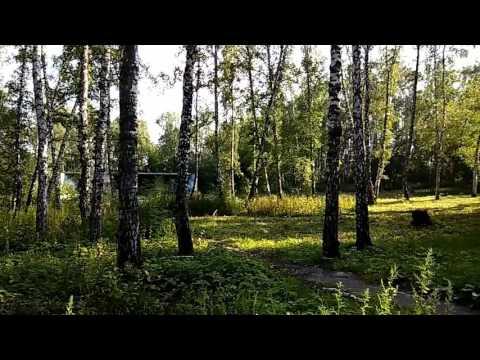 Парки и скверы Новосибирска. Сад Дзержинского.