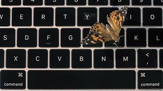 Apple's Faulty MacBook Butterfly Keyboard Explained... With Real Butterflies | WSJ