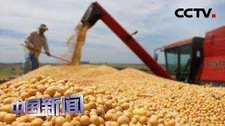 [中国新闻] 中美经贸摩擦 美国农民:遭到背叛 对政府失去信心 | CCTV中文国际