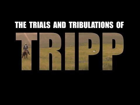 Episode 11:  Tripp And His Buddies Hunt Quail In Nebraska