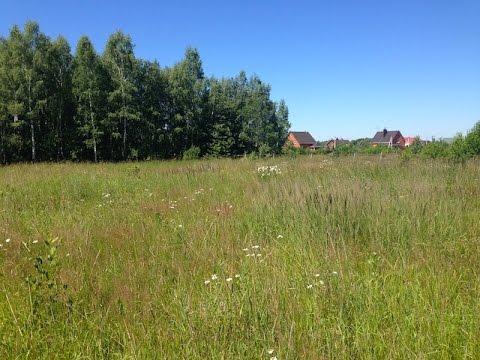 Участок 15 соток ЛПХ в деревне Ваулово Чеховского района .