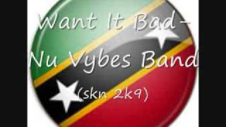 Want It Bad-Nu Vybes Band (SKN 2K9)