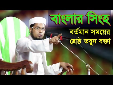 Bangla Waz Maulana Delwar Hossain Taherpuri | New Bangla Waz 2017