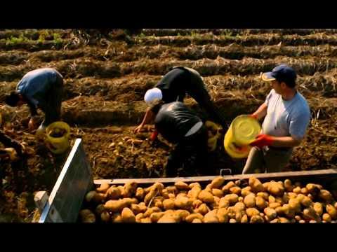 A week in Kosovo - Documentary Film (Serbian Subtitles)